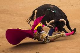il torero