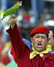 Hugo Chavez et parrot