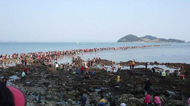 6-20 | Библейское чудо в Корее — два раза в году море расступается и тогда...