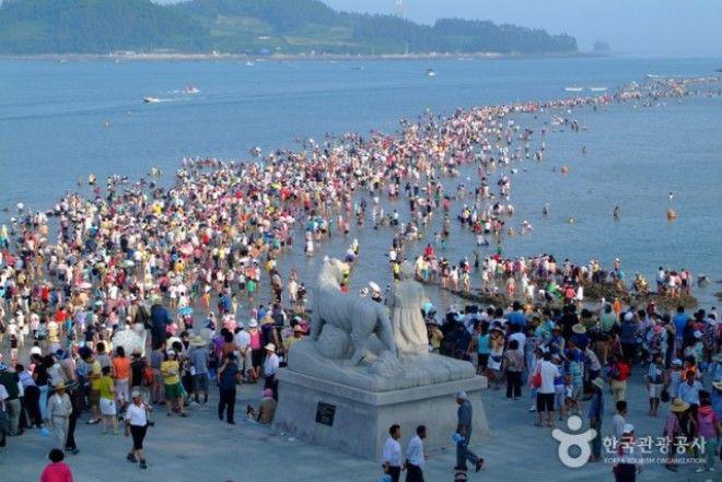 8-6 | Библейское чудо в Корее — два раза в году море расступается и тогда...