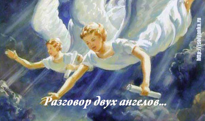 ngels   Разговор двух ангелов в небесной канцелярии...