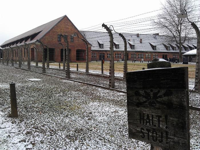 image7-39 | Найденные в Освенциме в 1980 году записи узника расшифровали...