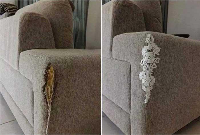 image8-104 | Что делать, если кот испортил диван?