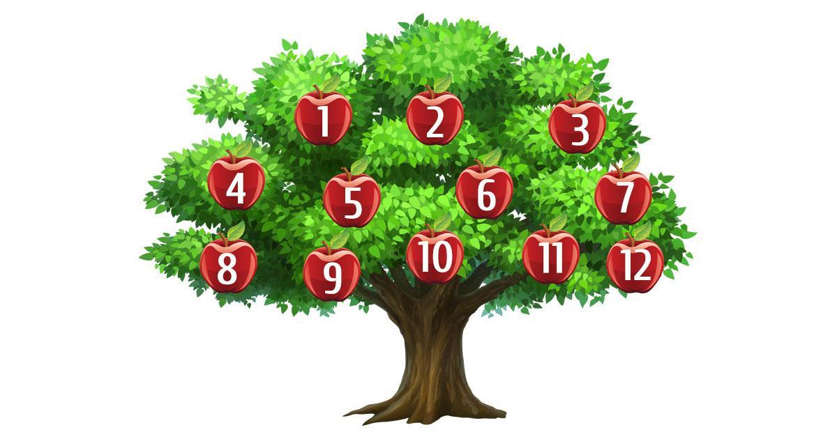 image1-60 | Сорванное яблоко подскажет, исполнится ли Ваше желание?!