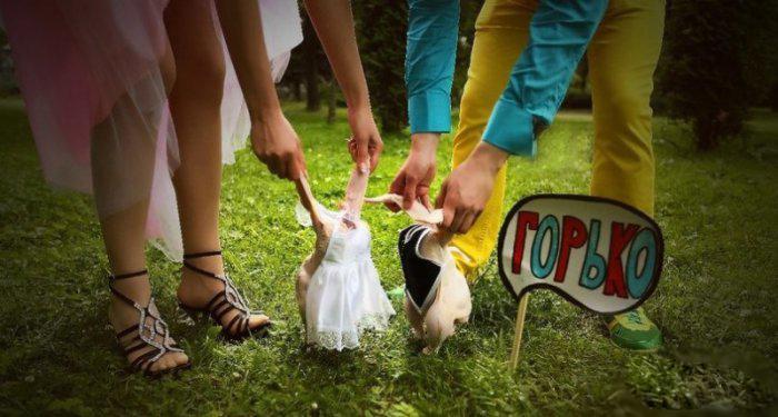 image17-4 | 34 свадебных фотографии, которые насмешат вас до слез!