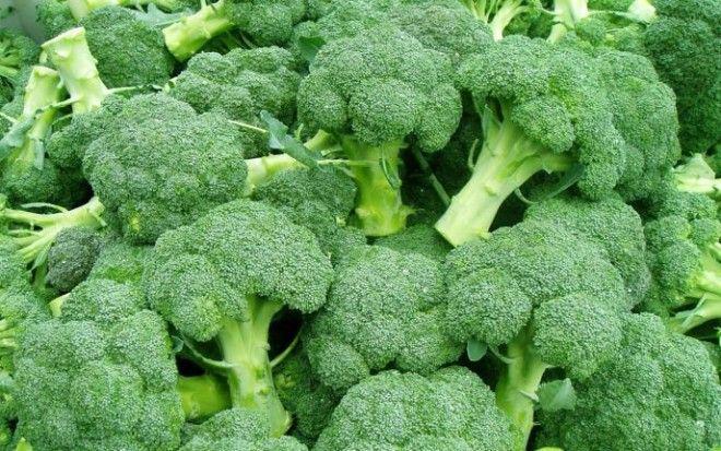 image5-5 | Сколько времени требуется для приготовления разных овощей?