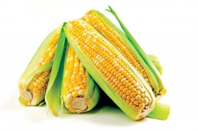 image8-4 | Сколько времени требуется для приготовления разных овощей?
