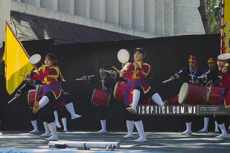 Ryukyukoku_FotoGloriaMinauro_isoptica_6696w