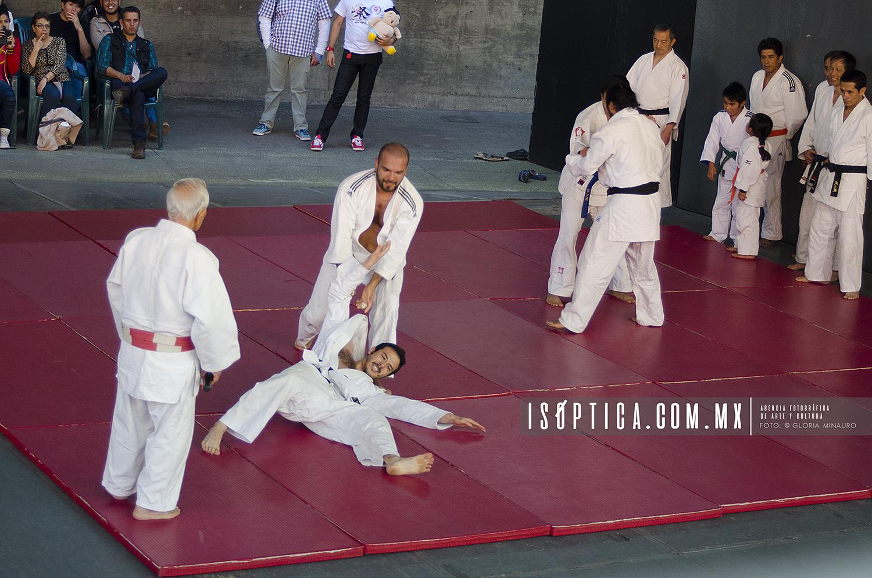 Judo_FestivalJapon2016_foto GloriaMinauro_6908w