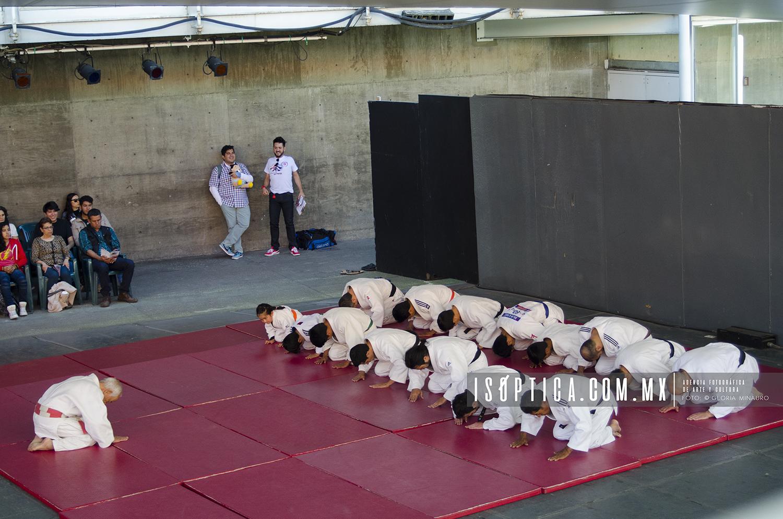 Judo_FestivalJapon2016_foto GloriaMinauro_6933w