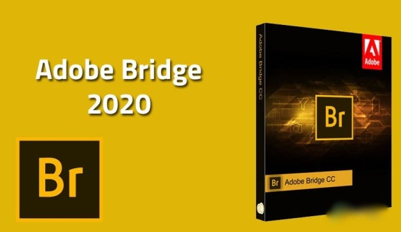 Where can you download Adobe Bridge CC 2020 for free