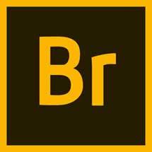 Adobe Bridge CC 2021 Download Full Version for free