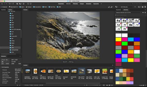 Adobe Bridge CC 2020 Download for Free 2
