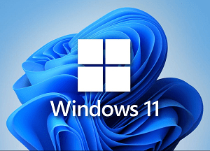 Download Windows 11 ISO Developer Build 64 bit for Free