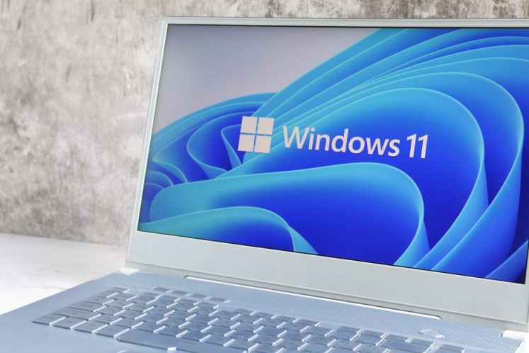 What are the best Security and Privacy Features on Windows 11 1