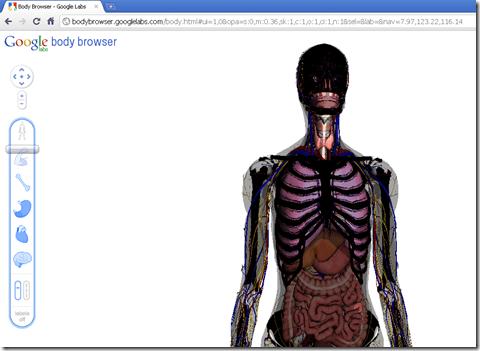 Google Body Browser - Atlas 3D Anatomi Tubuh Manusia