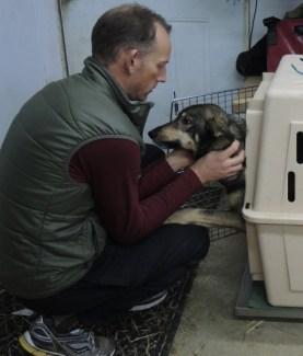 Ben Miller with sled dog
