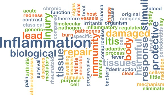 word cloud highlighting the word inflammation