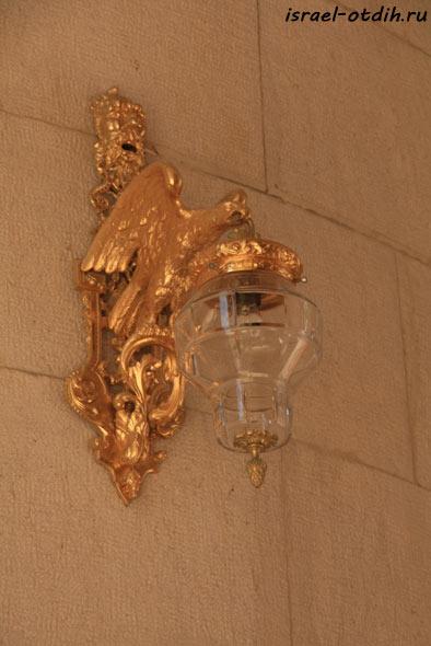 золотой-орёл фото