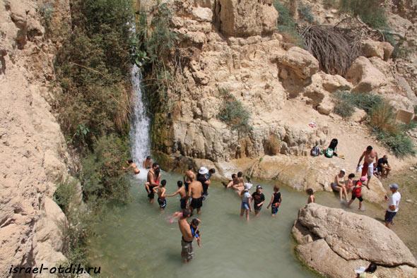 купание в эйн геди фото