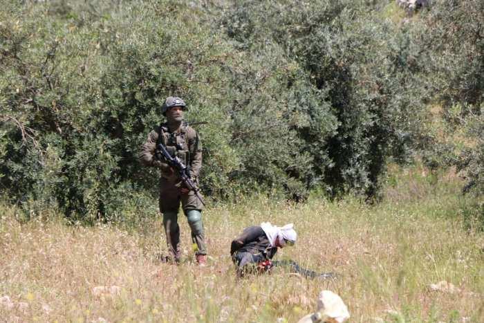Israeli soldiers shoot bound Palestinian teen