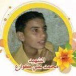 Mohammed Ali Kaware'
