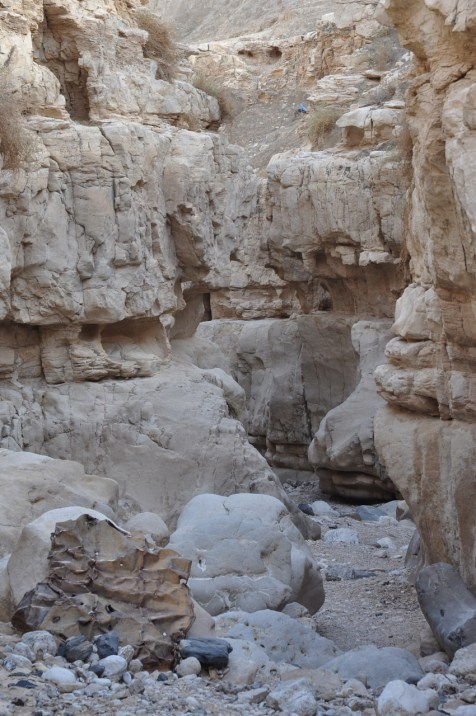 Canyon in Nahal Og
