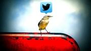 Qué va a cambiar en mi estrategia y ejecución en Twitter