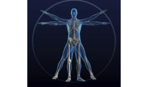 Preview image for Clinical Imaging Market Dynamics and Service Provider Performance