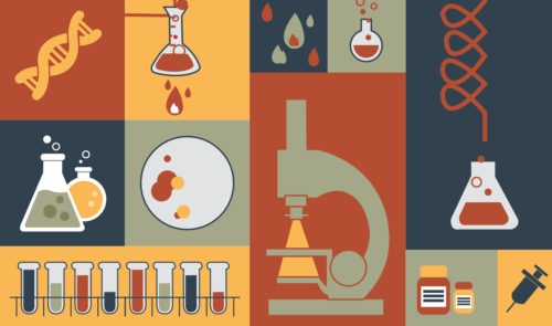 Preview image for Bioanalytical Labs Market Dynamics and Service Provider Performance (2015)