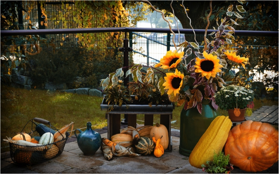 Halloween Decorating and Marketing Tips For Selling Your House