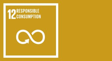 SDG-12-Ensure-sustainable-consumption-and-production