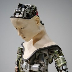 Are we ready for the robotic revolution? by Oane Visser and Pieter Medendorp