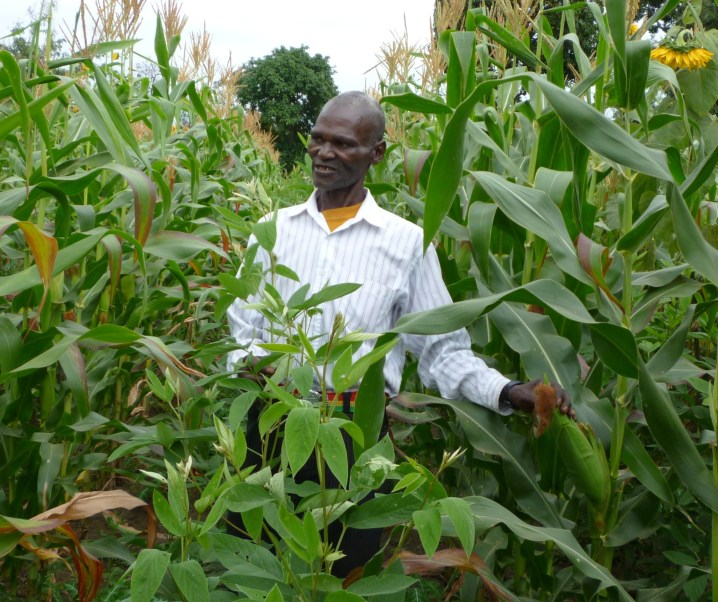 A green revolution using frugal innovation: crop insurance for Tanzanian farmers by Meine Pieter van Dijk