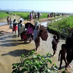 Holding Myanmar accountable for acts of genocide is just the start of a long process of justice for the Rohingya by Lize Swartz