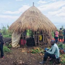 Environmental destruction and resistance: a closer look at the violent reoccupation of the DRC's Kahuzi-Biega National Park