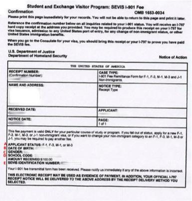 Sevis I 901 Receipt