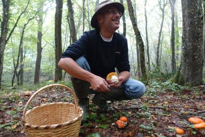 Jilber Barutciyan, Turkey's leading wild mushroom expert, photo by Ansel Mullins