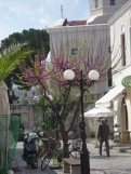 kos_island_eleka_rugam_rebane_kaire_raiend-8