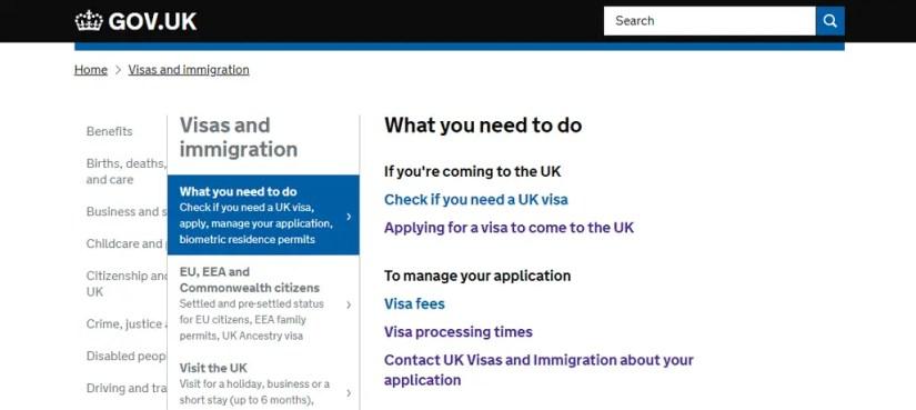 uk visa status
