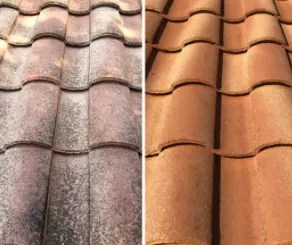 roof cleaning dolphin soft wash