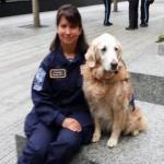 Last Surviving 9/11 Ground Zero Search Dog Returns to the World Trade Center