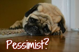 pessimist dog