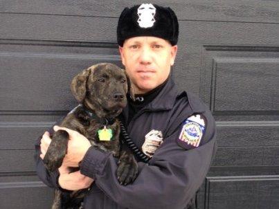 columbus police officer nolan saves dog from crash