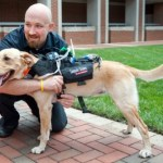 New Cyber Harness Allows Two-Way Communication Between Dogs and Humans