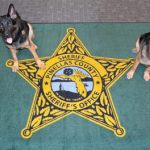 'In Dog We Trust' Rug Auctioned off for $9,650