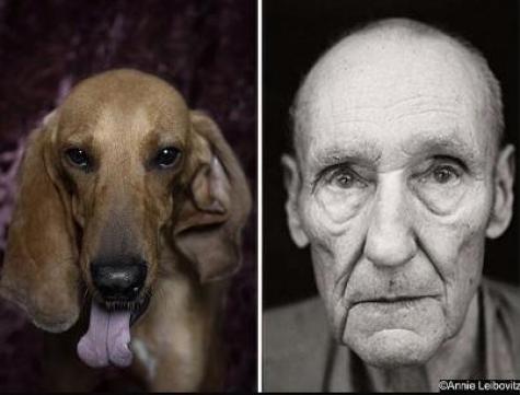 poetic dogs william s. burroughs