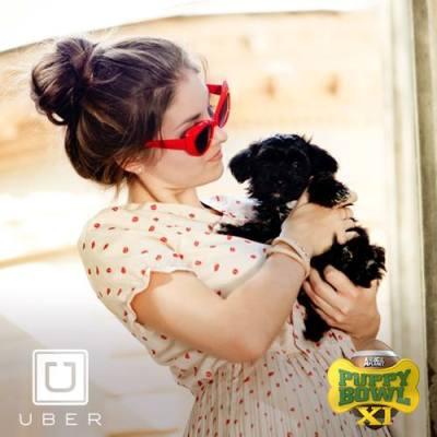uber puppies on demand