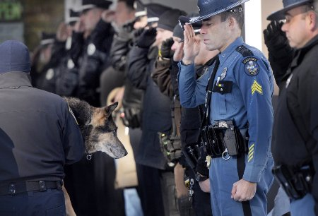sultan police dog saluted on final trip to vet