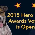 Voting Begins for 2015 Hero Dog Awards